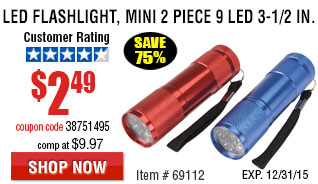 2 Piece 3-1/2 in. 9 LED Mini Flashlight