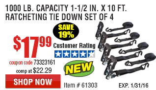 1000 lb. Capacity 1-1/2 in. x 10 ft. Ratcheting Tie Down Set of 4