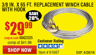 3/8 in. x 65 ft. Replacement Winch Cable with Hook