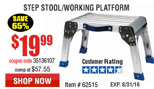 Step Stool/Working Platform