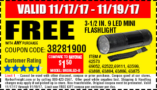 Free 3-1/2 in. Mini Flashlight