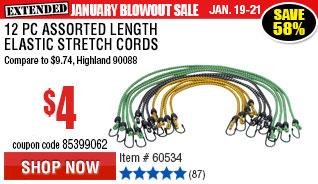 12 Pc Assorted Length Elastic Stretch Cords