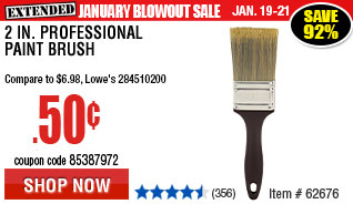 2 in. Professional Paint Brush