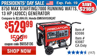 8750 Max Starting/7000 Running Watts, 13 HP  (420cc) Generator