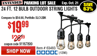 24 Ft. 12 Bulb Outdoor String Lights