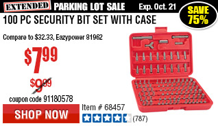 100 Pc Security Bit Set with Case