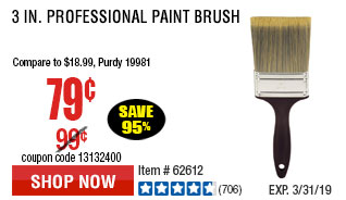 3 in. Professional Paint Brush