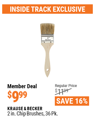 2 in. Chip Brushes, 36 Pk.