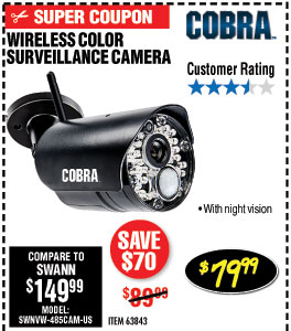 Wireless Color Surveillance Camera with Night Vision