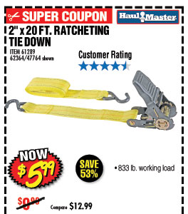 833 lb. Capacity 2 in. x 20 ft. Ratcheting Tie Down