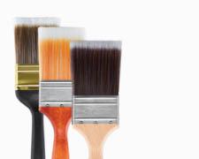 Shop Paint Brushes